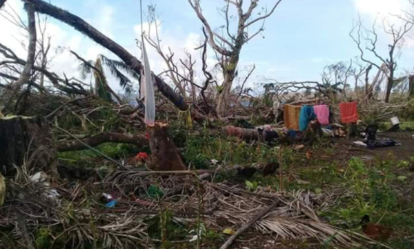 Report on our Emergency Appeal following Cyclone Harold