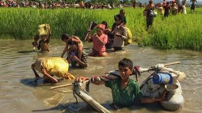CWS Appeal for Rohingya refugees